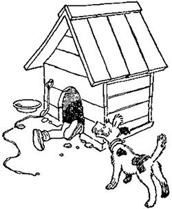 Витя поскорей выгнал из конуры Бобика, сам залез на его место