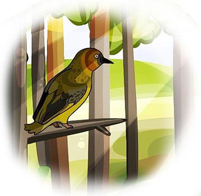 Птичка Вьюха