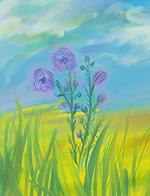 Лён цвёл чудесными голубенькими цветочками